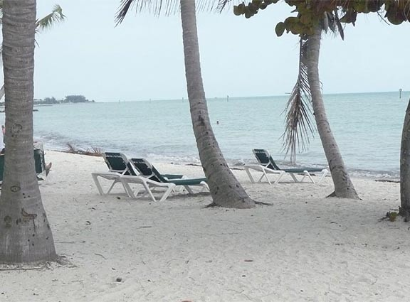 Condo located directly across from key west largest beach!